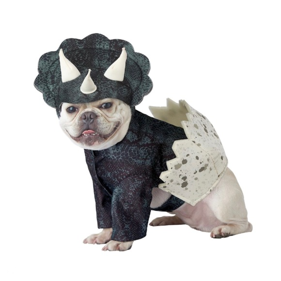 California Costumes Other - 🆕 Dino Pup Triceratops Dinosaur Pet Costume, Med